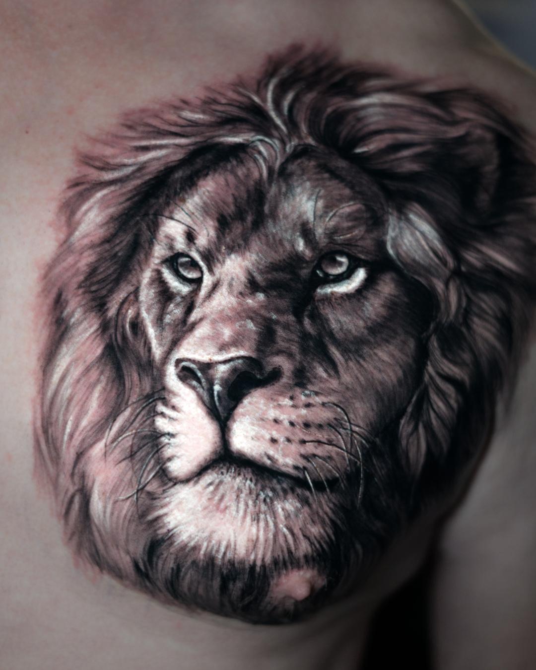 Tattoo tatuaje Alexis Epalza black and grey realistic Lion leon animal